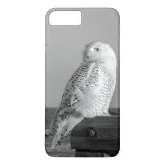 Snowy Owl Phone Cover