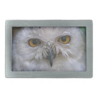 Snowy Owl, Schnee-Eule 02_rd Belt Buckles