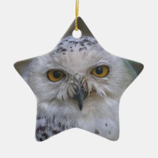 Snowy Owl, Schnee-Eule 02_rd Ceramic Ornament