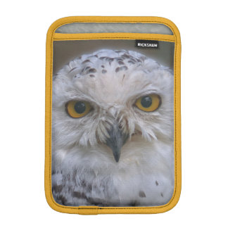 Snowy Owl, Schnee-Eule iPad Mini Sleeve