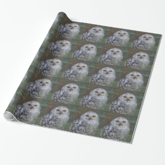 Snowy Owl, Schnee-Eule Wrapping Paper