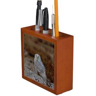 Snowy owl sitting on a rock desk organiser