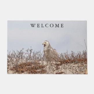 Snowy owl sitting on the beach doormat