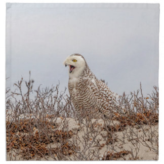 Snowy owl sitting on the beach napkin