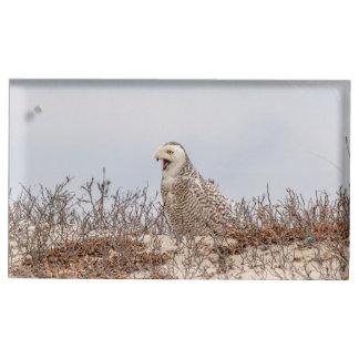 Snowy owl sitting on the beach table card holder