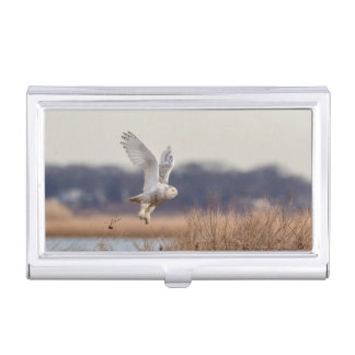 Snowy owl taking off business card holder