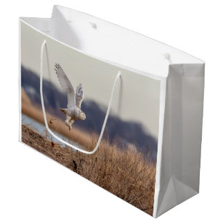Snowy owl taking off large gift bag