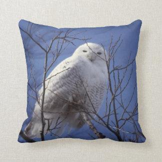 Snowy Owl, White Bird against a Sapphire Blue Sky Cushion