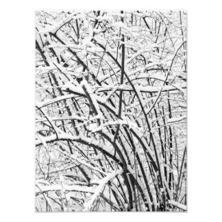 Snowy Patterns 2 BW Photo Print