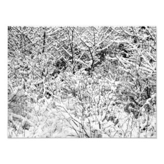 Snowy Patterns 4 BW Photo Print