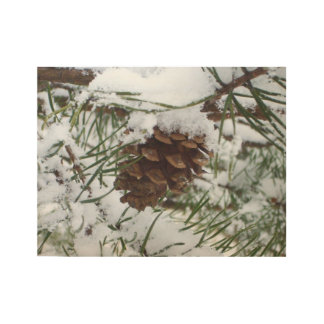 Snowy Pine Cone I Winter Nature Photography Wood Poster