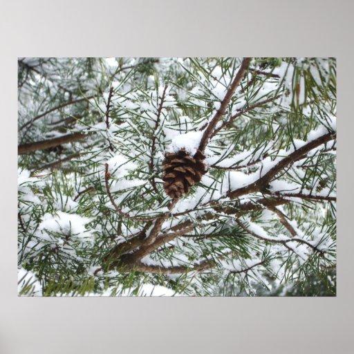 Snowy Pine Cone Print