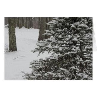 Snowy Pine Holiday Card