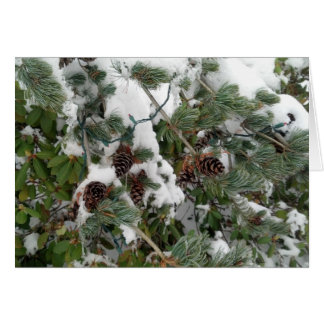 Snowy Pine Tree and Pine Cones Card