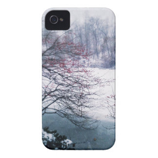 Snowy Pond in Central Park iPhone 4 Cover