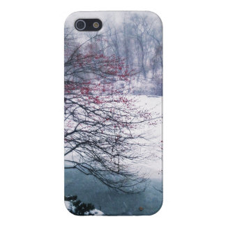 Snowy Pond in Central Park iPhone 5/5S Case