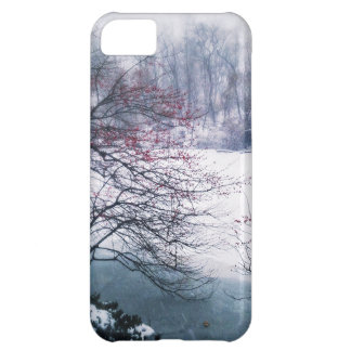 Snowy Pond in Central Park iPhone 5C Case