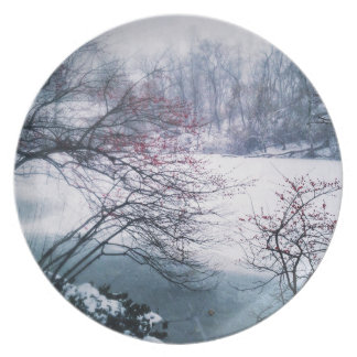 Snowy Pond in Central Park Party Plate