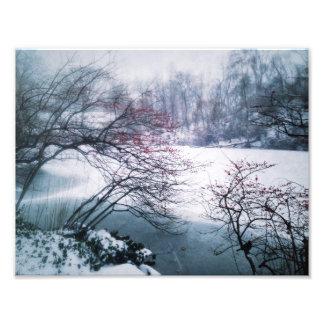 Snowy Pond in Central Park Photo Print