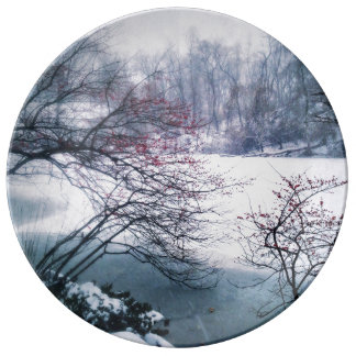 Snowy Pond in Central Park Porcelain Plate