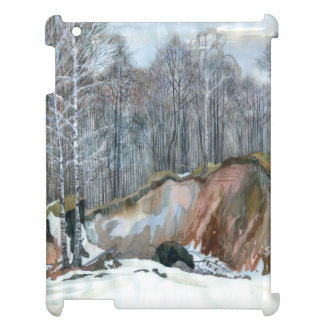 Snowy ravine iPad cover