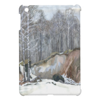 Snowy ravine iPad mini case