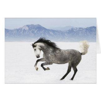 Snowy Romp Horse Greeting Card