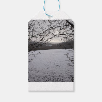 Snowy Scene Gift Tags