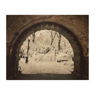 Snowy Shelter in Central Park Wood Wall Art