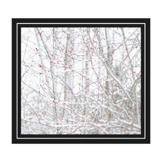 Snowy Spring Stretched Canvas Print
