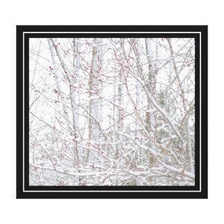 Snowy Spring Canvas Prints