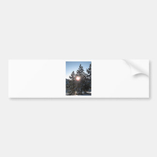 Snowy sunrise in Colorado Bumper Sticker