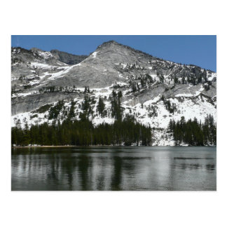 Snowy Tenaya Lake Yosemite National Park Photo Postcard