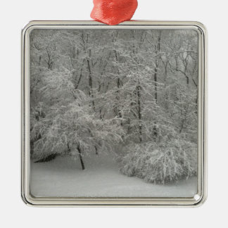 Snowy Trees Silver-Colored Square Decoration