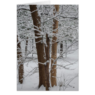 snowy trunks greeting card