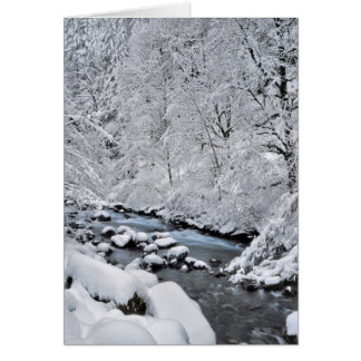 Snowy white creek scenic, Oregon Card