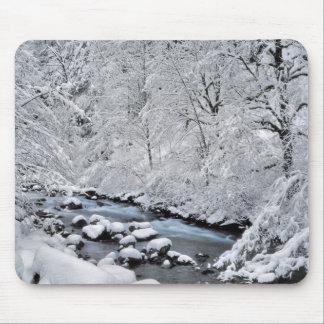 Snowy white creek scenic, Oregon Mouse Pad