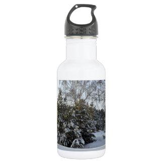 Snowy Winter Day 532 Ml Water Bottle