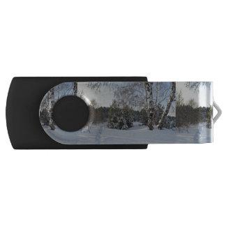 Snowy Winter Day Swivel USB 2.0 Flash Drive