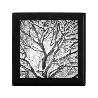 Snowy Winter Intertwine Gift Box