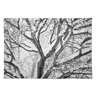 Snowy Winter Intertwine Placemat