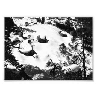 "Snowy winter scene photo, 5""x 7"", black and white art photo"