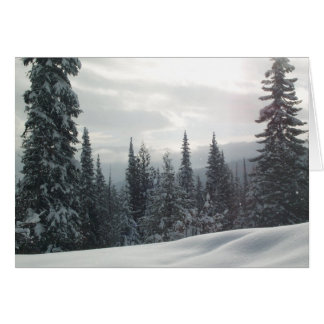 Snowy Wonderland Card
