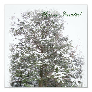 Snowy Xmas Trees, Winter Wonderland Forest RSVP Announcements