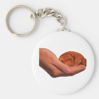 Snuggle Bear Key Ring