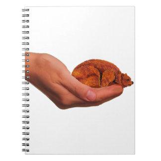 Snuggle Bear Notebook