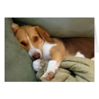 Snuggle Pup Note Card