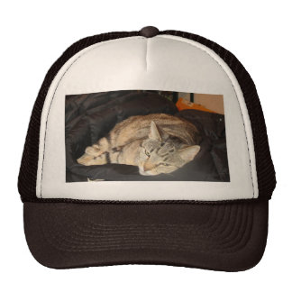 Snuggle Time For Indigo Hat