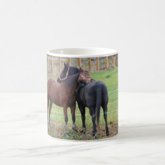 Snuggling Morgan Horses Coffee Mug
