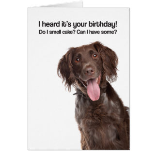 So I Smell Cake? Can I Have Some? (GWP) - Birthday Card
